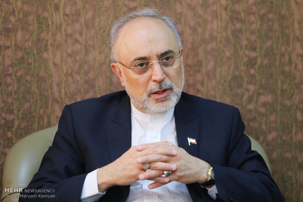 Iranian nuclear chief departs for Vienna to attend IAEA conference