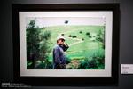 """معرض""""صورة لشجرة واحدة"""" في ذكرى ميلاد """"كيارستمي"""" /صور"""