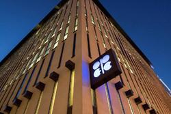 اوپک و روسیه در حال بررسی کاهش تولید نفت هستند