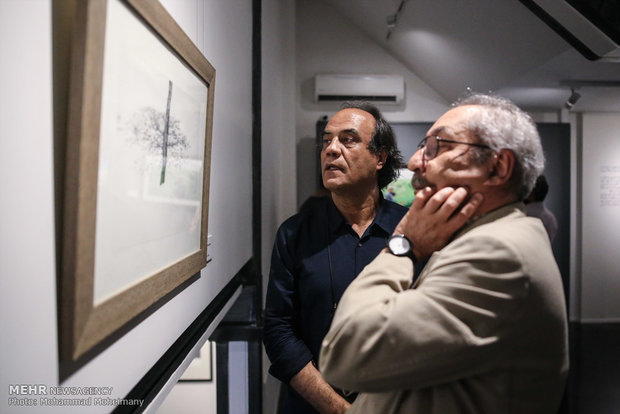 'Single Tree' expo commemorates Abbas Kiarostami