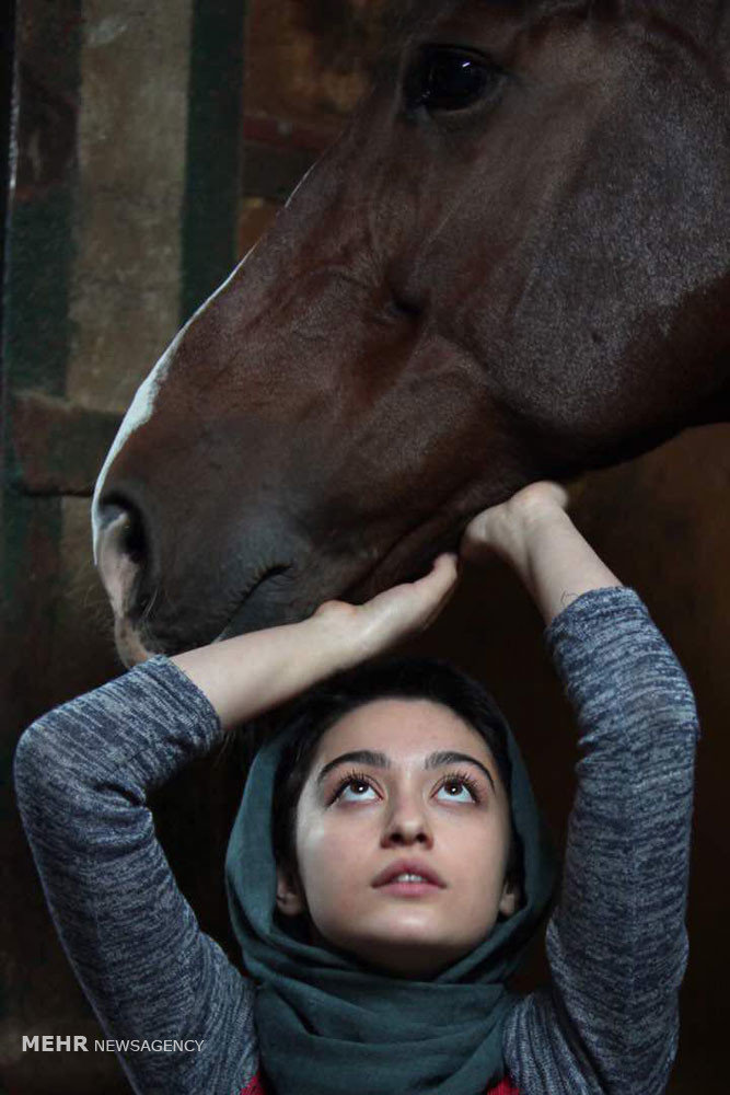 """Dressage"" star Negar Moqaddam crowned best at Shanghai festival"