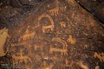 سنگ نگاره های 12 هزار ساله یزد