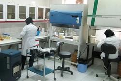 ورشکستگی آزمایشگاه ها دور از انتظار نیست/درخواست از وزارت بهداشت