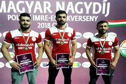 Iran Greco-Roman wrestlers win 5 medals at Hungarian Grand Prix