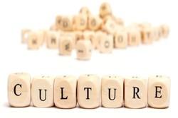 فلسفه فرهنگ