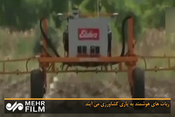 رباتهای هوشمند به یاری کشاورزی میآیند
