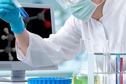 شیوع ناباروری در مردان ایرانی بالاتر از آمارهای جهانی/ روند درمان دارویی و جراحی