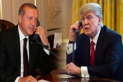 تلاش کاخ سفید برای گفتگوی ترامپ و اردوغان