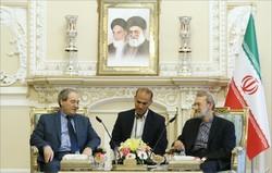 لاريجاني: مقاومة الشعب السوري قد حققت نتائج جيدة