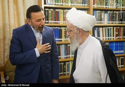Vaezi meets grand ayatollahs in Qom visit