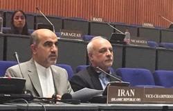 Iran calls OPCW move 'politically motivated'
