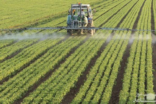 «حسن آباد» با رفع مشکل آب و احیای کشاورزی از بن بست خارج می شود