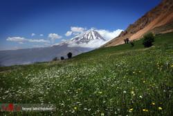 Mount Damavand threatened by land use change, mining activities