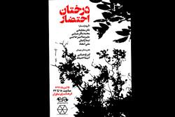 پرفورمنس «درختان احتضار» اجرا میشود