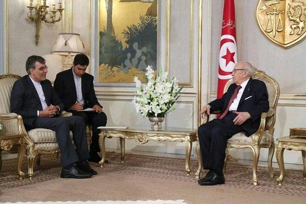 Iran's Jaberi Ansari holds talks with Tunisian president