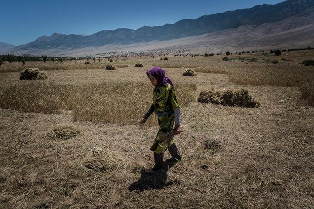 هراس جنگ آب در مازندران
