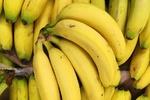 Banana imports into Iran declined by 33%