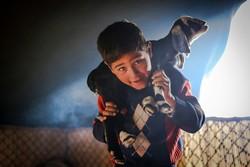 نافذة على حياة العشائر الرحالة في محافظة همدان الايرانية/ صور