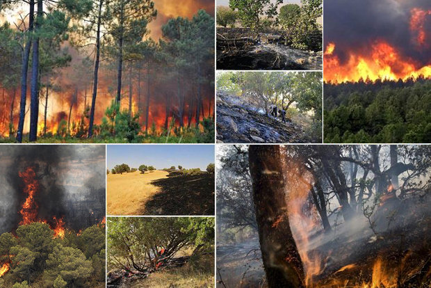 چتر آتش بر سر جنگلهای شمال/پایگاه اطفای حریق در حدوعده باقی ماند
