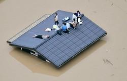 جاپان میں سیلاب سے ہلاکتوں کی تعداد 100 تک پہنچ گئی