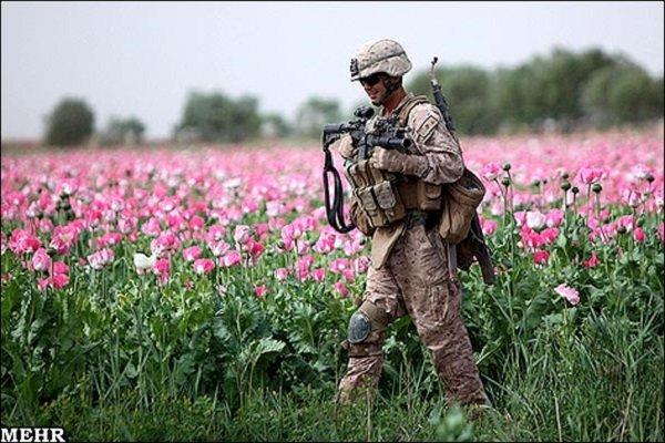 مقتل 3 جنود أمريكان في أفغانستان