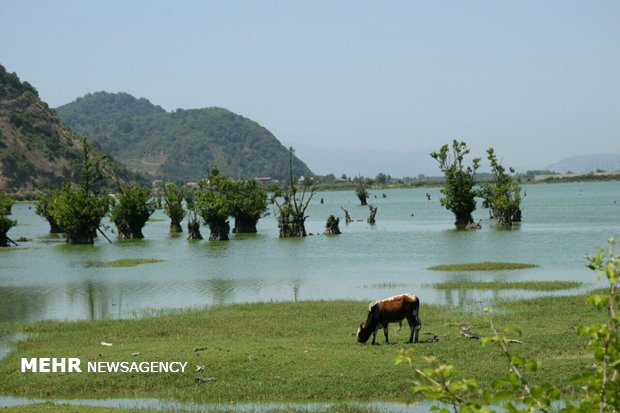 Astara's Estil Lagoon on verge of dryness