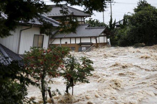 سیل در ژاپن