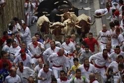 Fotoğraf: İspanya'da Kızgın Boğa Festivali