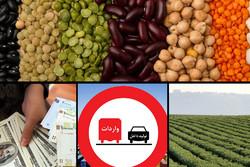 واردات حبوبات با ارز دولتی