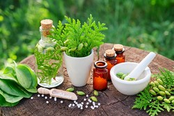 Herbal medicine use increases