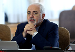 Zarif: Iran pursuing cases of 'illegally' detained expatriates