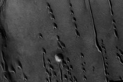 کشف وجود نشانه های احتمالی از حیات در تپه های هلالی مریخ