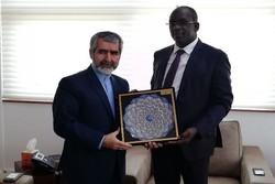 إيران والسنغال تبحثان سبل تنمية التعاون الصحي والعلاجي