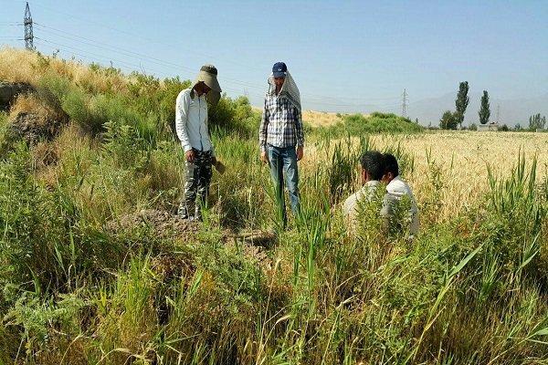 آغاز عملیات اجرایی تعیین عرصه و حریم «خندان تپه» در همدان