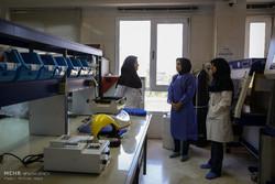 پیشرفت ایران در فناوری ذخیره بافت/ رویای باروری بیماران سرطانی محقق می شود