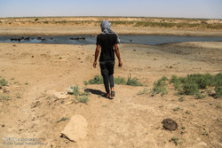فعالان محیط زیستی خوزستان خواستار تأمین حق آبه هورالعظیم شدند