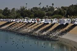 توپ لاستیکی برای جلوگیری از تبخیر اب سدها