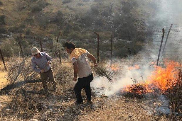 بخش وسیعی از اراضی کوهستانی جم در آتش سوخت