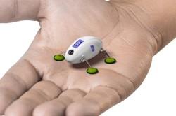 روبات سوسک