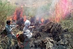 آتش سوزی در مراتع حریم تالاب های پلدختر - کراپشده