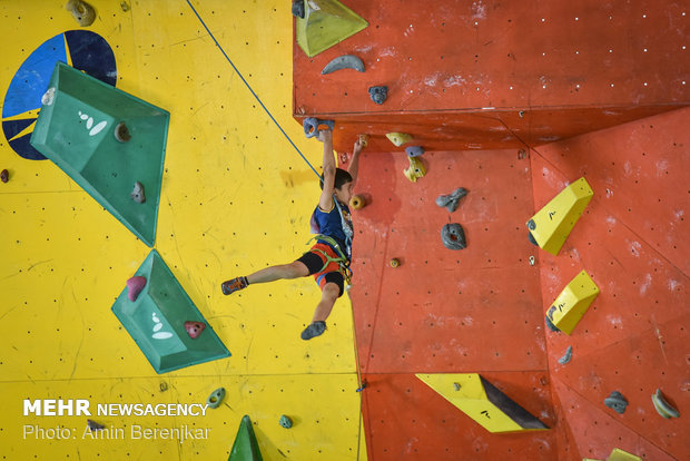 Shiraz hosts rock-climbing championship competitions