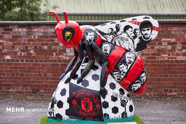 نمایشگاه مجسمه های زنبور در منچستر