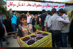 Blackberry festival held to promote rural tourism in Tehran