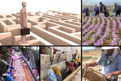 اعطای تسهیلات به ۱۱۷۱ طرح اشتغالزایی روستایی در زنجان