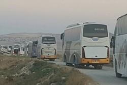 مشکلی بابت تامین اتوبوس در جابجایی زائران در مرز مهران وجود ندارد