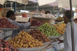 ازدهار سوق السمك والفواكه الصيفية في جزيرة قشم /صور
