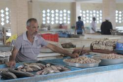 بزرگترین بازارچه ماهی فروشان در سیریک راه اندازی می شود