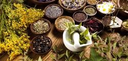 Persian medicine