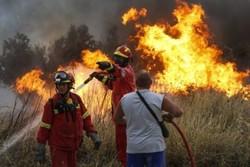 یونان میں خوفناک آتشزدگی سے 50 افراد ہلاک