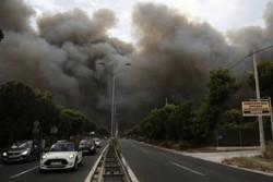 Yunanistan yanıyor: En az 50 kişi öldü
